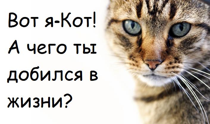 Проект «Ты-предприниматель» в Курской области